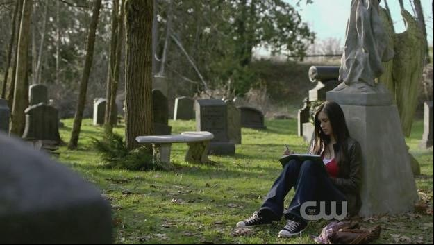 the Vampire Diaries Chuck Taylor Lo Top Sneakers